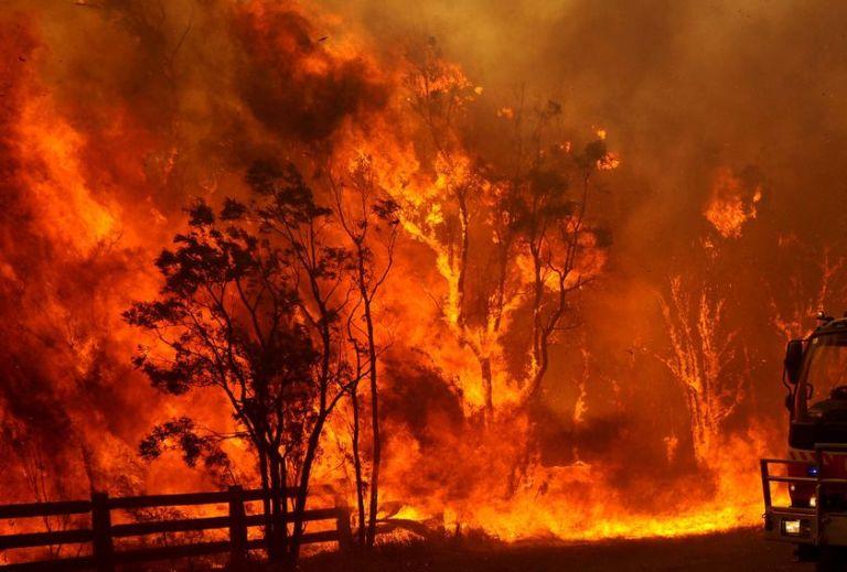 bushfires-in-sydney-injure-seven-firemen